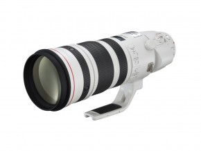 Canon EF 200-400mm f4L IS 1.4x